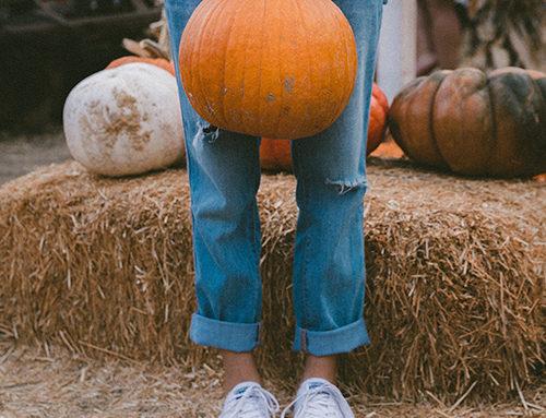Des bonbons ou un sort : voici les appels à projets d'octobre !